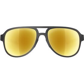 adidas Pacyr Brillenglas zwart/goud